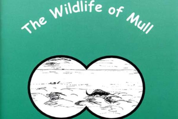 The Wildlife of Mull